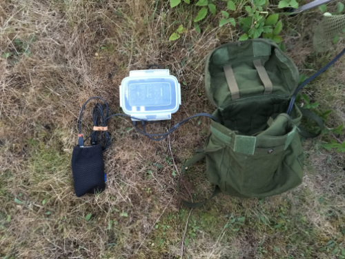 Wildlife Sound Recording Society - Nocmig